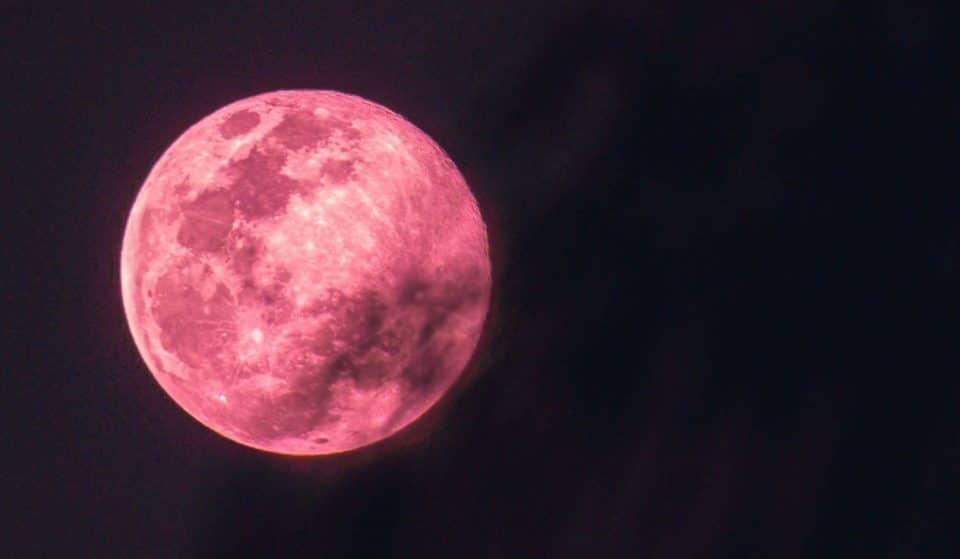 La Luna delle Fragole nel cielo questo giovedì