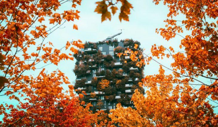 Foliage a Milano, 5 posti dove scattare delle bellissime foto in autunno