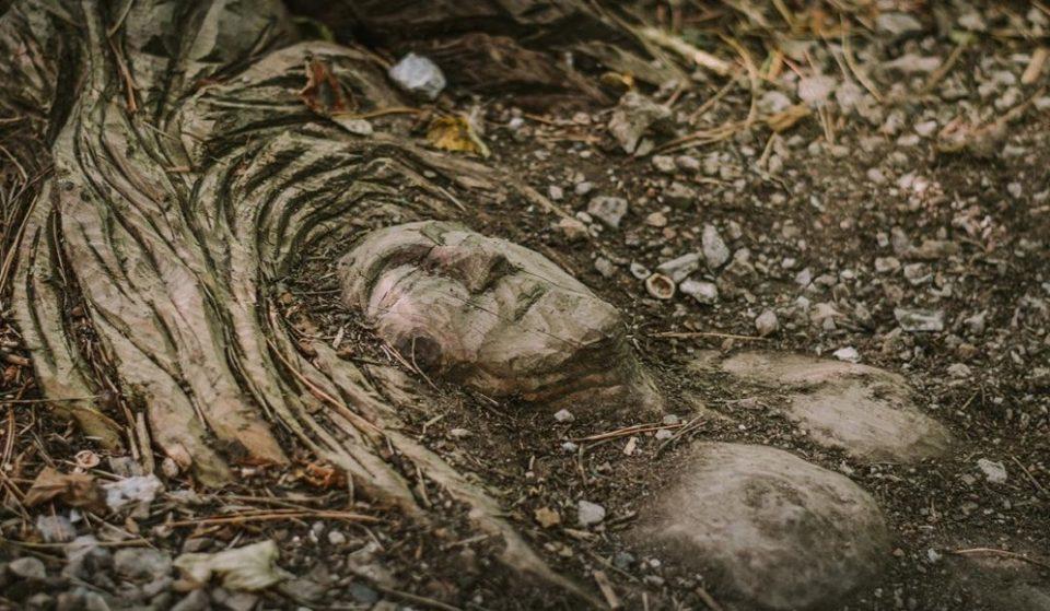 Il Sentiero Spirito del Bosco: un posto magico dove fare trekking