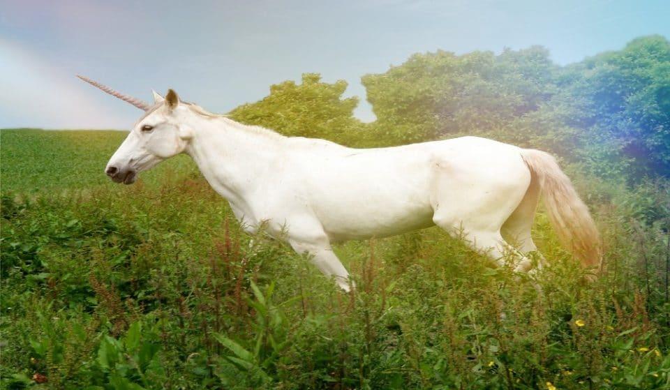 L'unicorno è esistito davvero? Una curiosità da scoprire in una chiesa di Milano