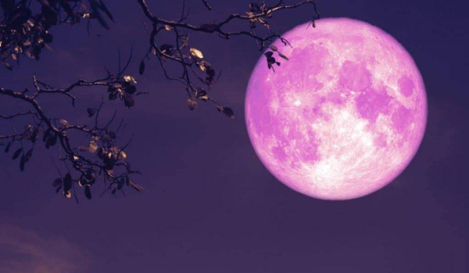 Il 27 aprile una bellissima Luna rosa illuminerà il cielo!