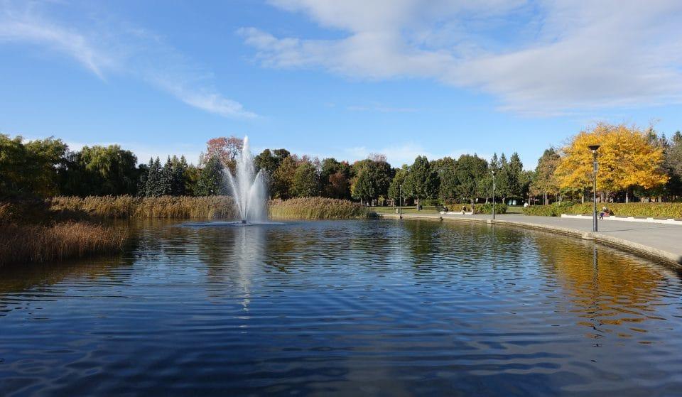 Villeray a été nommé un des meilleurs quartiers au monde! Voici les lieux à visiter