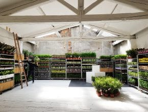 Plantes pour Tous investit le Dojo ce week-end à Nice !