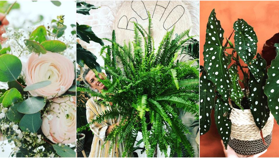 BOHO : le Concept Store le plus «Green» de Nice !