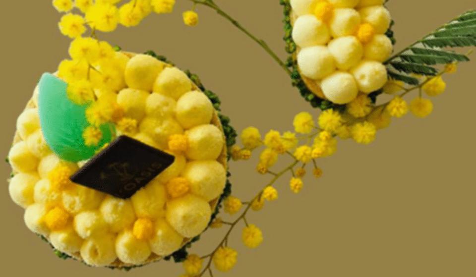 Insolite : Venez goûter la Tarte au Mimosa de chez L'Oasis !