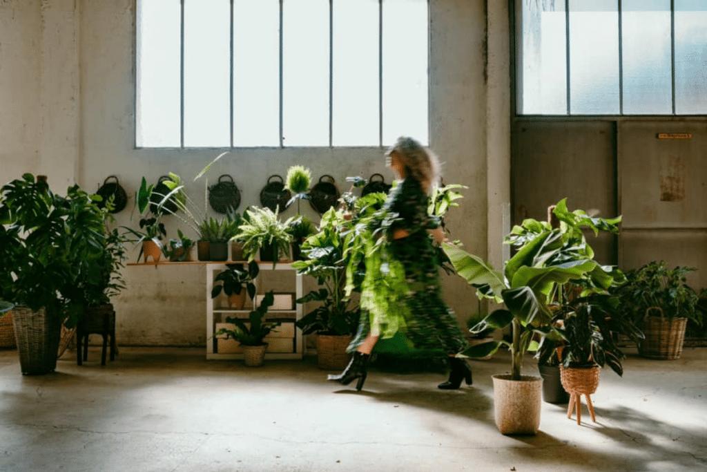 Maison Louisette : Le nouveau concept de Décoration Végétale arrive sur la Côte d'Azur !