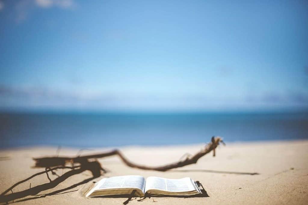 """La Vague de Nice"", le premier roman de Brice Josselin"