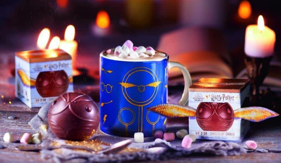 Avis aux Moldus : Un Vif d'Or au chocolat Harry Potter à déguster en édition limitée !