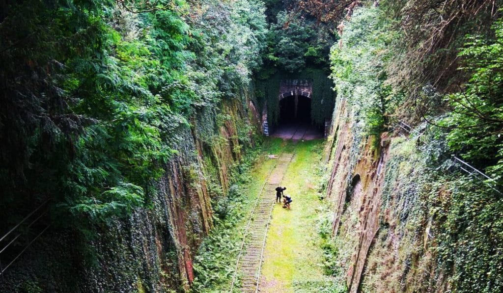 La Petite Ceinture : une promenade à toutes les extrêmes