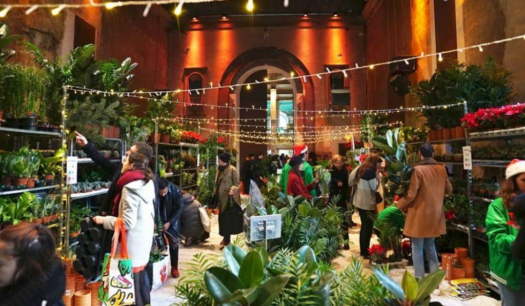 Brunch & Plantes pour tous au Café A ce week-end !
