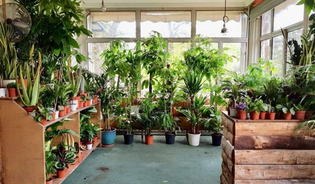 Plante Pour Tous revient ce week-end au Lab'Oïkos!