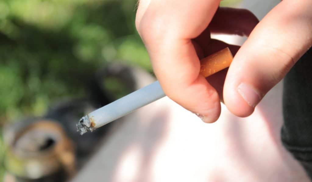 La cigarette interdite dans 4 parcs parisiens