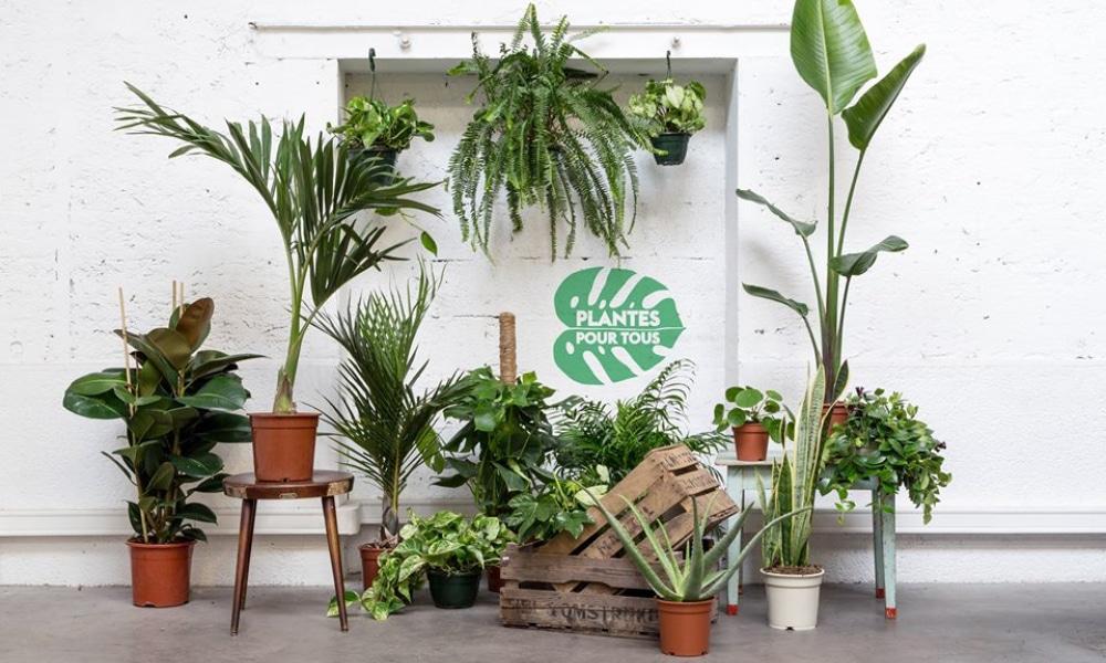 «Plantes pour tous» revient ce week-end à Paris !