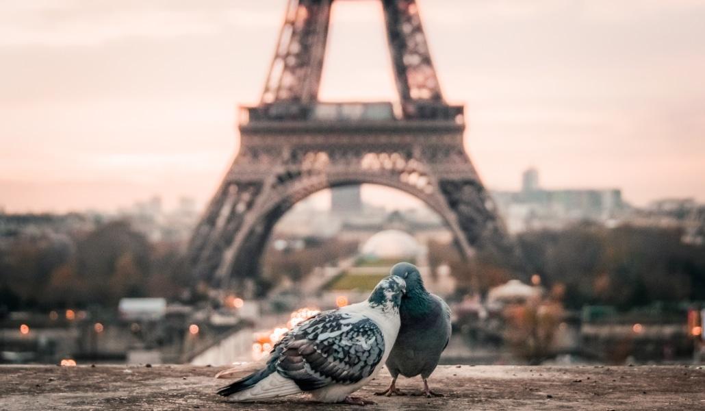 Que faire au mois de février à Paris