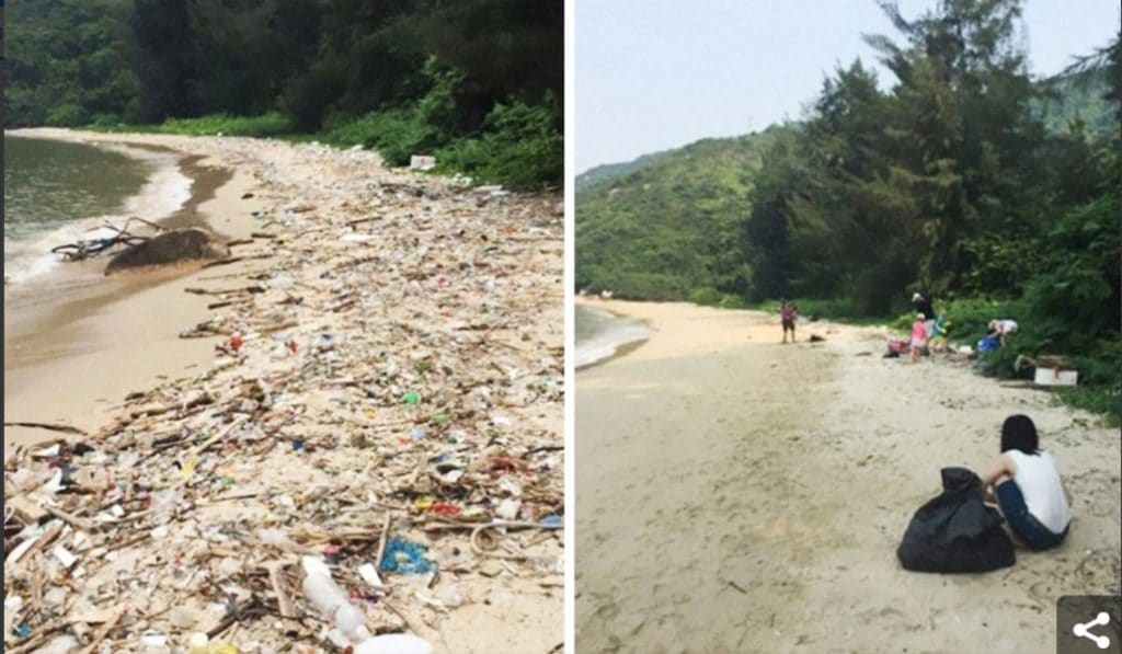 Nettoyer la planète, le nouveau challenge qui secoue le net
