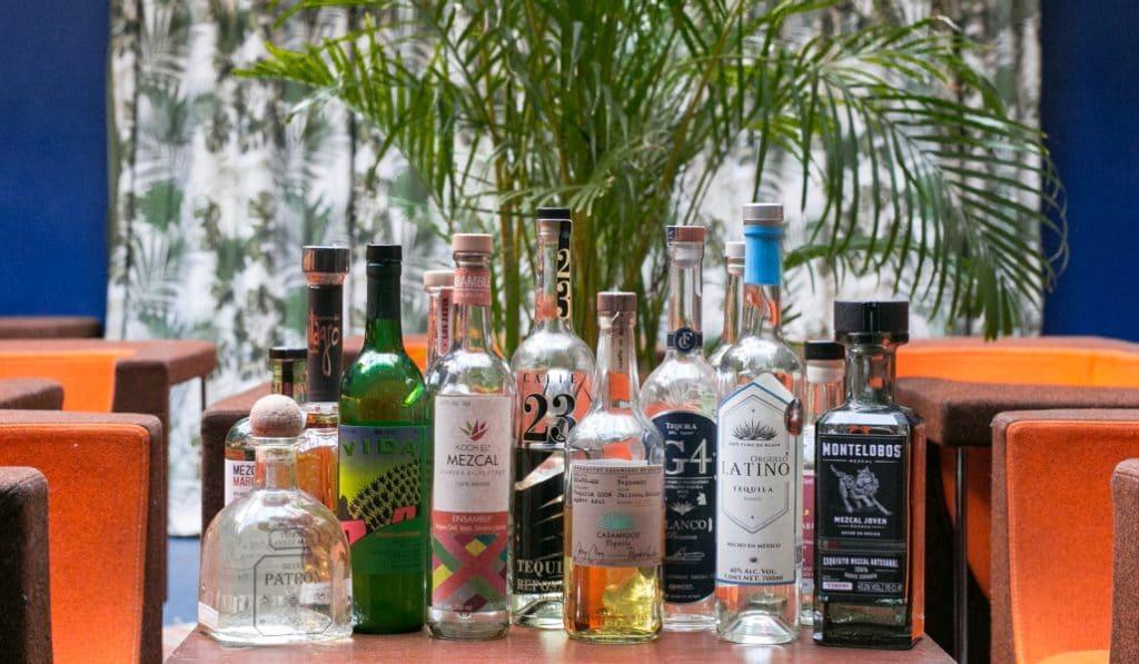 Viva Agave : Un festival de Mezcal et Tequila débarque à Paris !