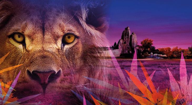 Les « nocturnes » estivales du Parc Zoologique : Vie sauvage à la tombée de la nuit