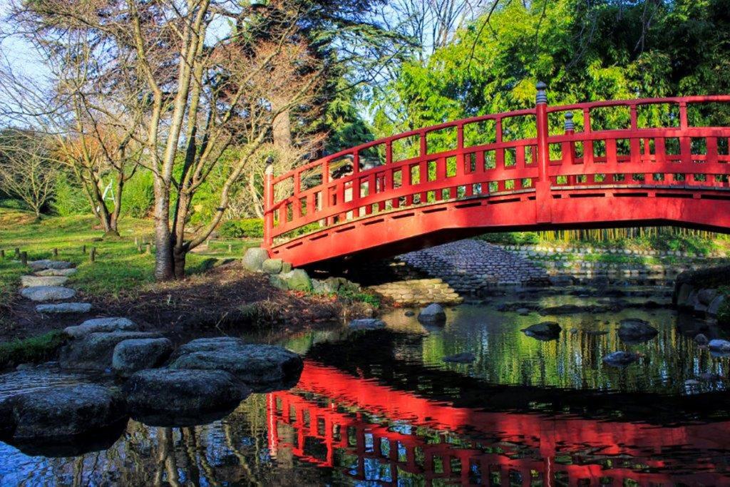 Le Musée Albert Khan rouvre ses somptueux jardins d'Eden !
