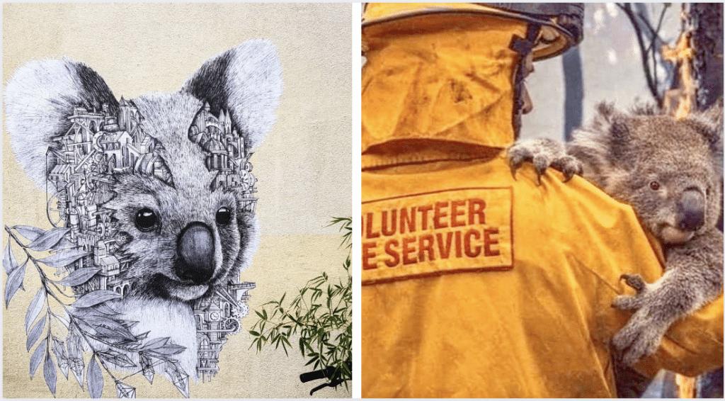 Street art : Un koala sur les murs de Paris en soutien aux incendies qui ravagent l'Australie