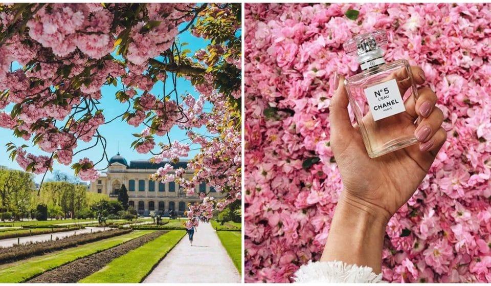 Paris : une exposition Chanel GRATUITE s'installe au Jardin des Plantes !