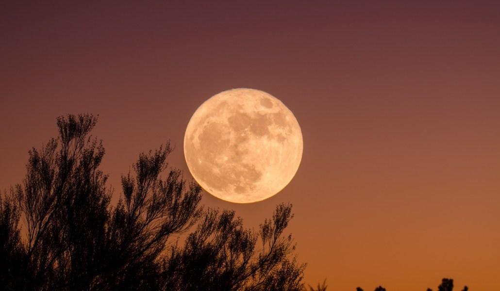 Magique : une super lune rose va éclairer le ciel ce mardi !