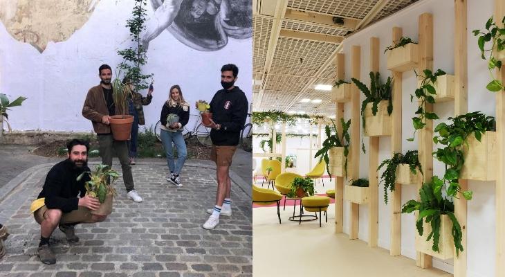 Un hôpital pour soigner les plantes abandonnées du confinement a ouvert à Paris !