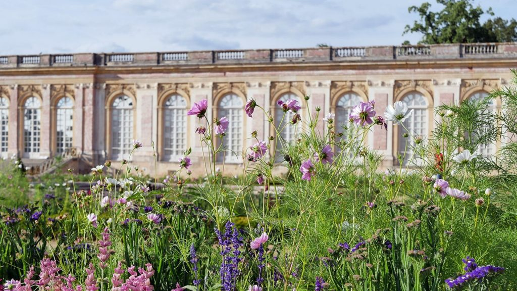 Le Grand Trianon de Versailles transforme son jardin en jardin africain pour cet été !