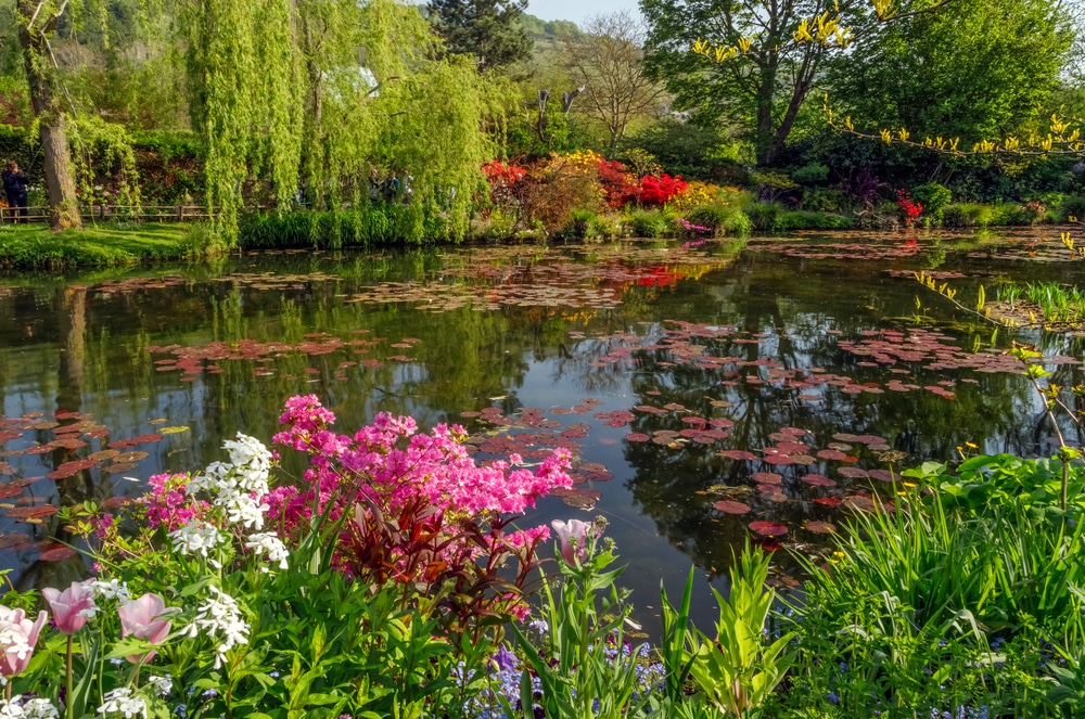 Belles images Shutterstock_1811922643