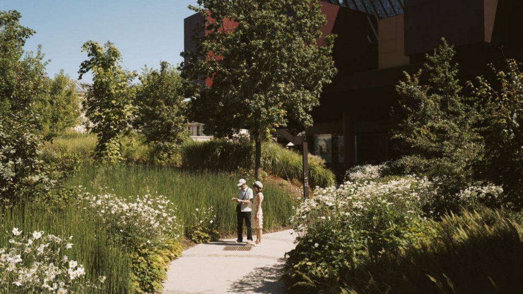 Jardin d'été du Musée Quai Branly : Dernière semaine pour profiter des événements gratuits !