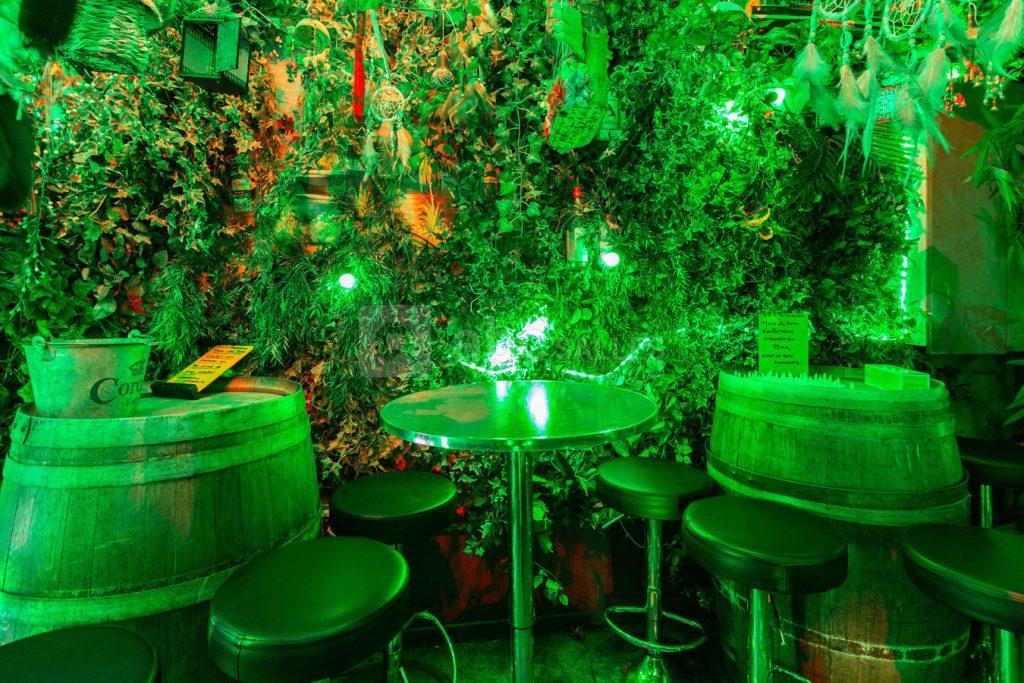 Amazonas Bar jungle amazonienne Paris