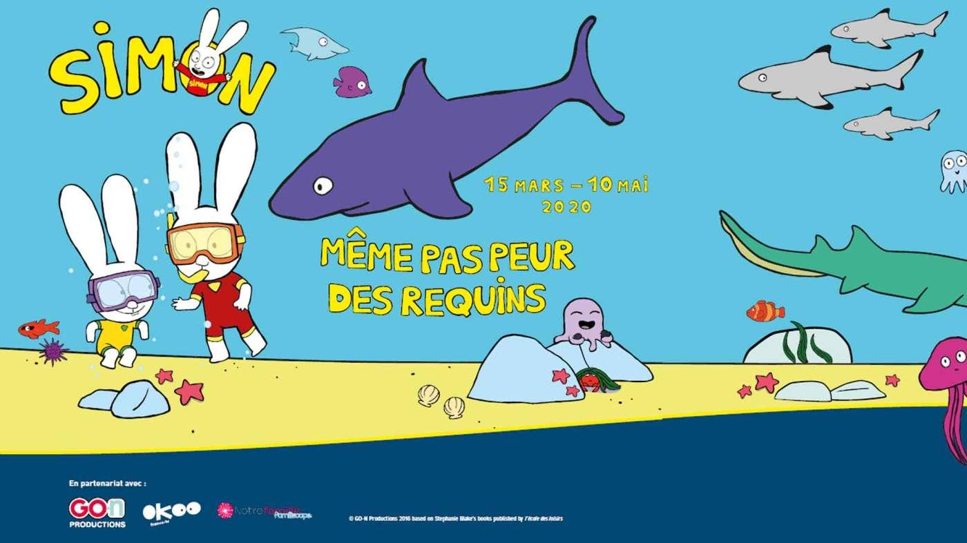 simon meme pas peur des requins paris exposition
