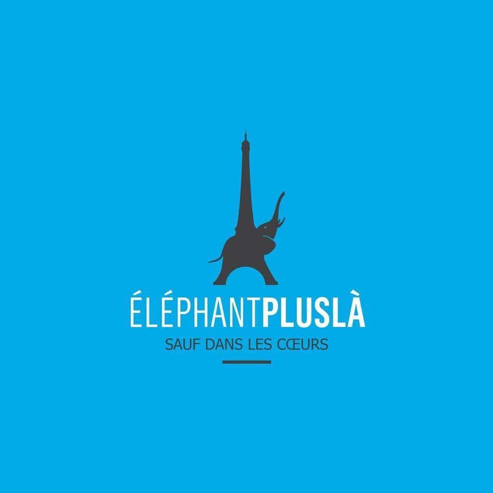 elephant-paname-le-centre-d-art-et-de-danse-a-paris-annonce-sa-fermeture