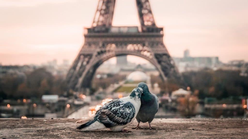 tour eiffel amour paris ville lumière paname surnoms capitale france
