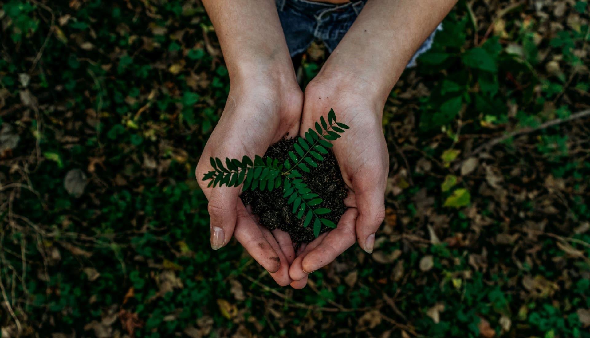 écologie 2020 2021 nature environnement accords de paris