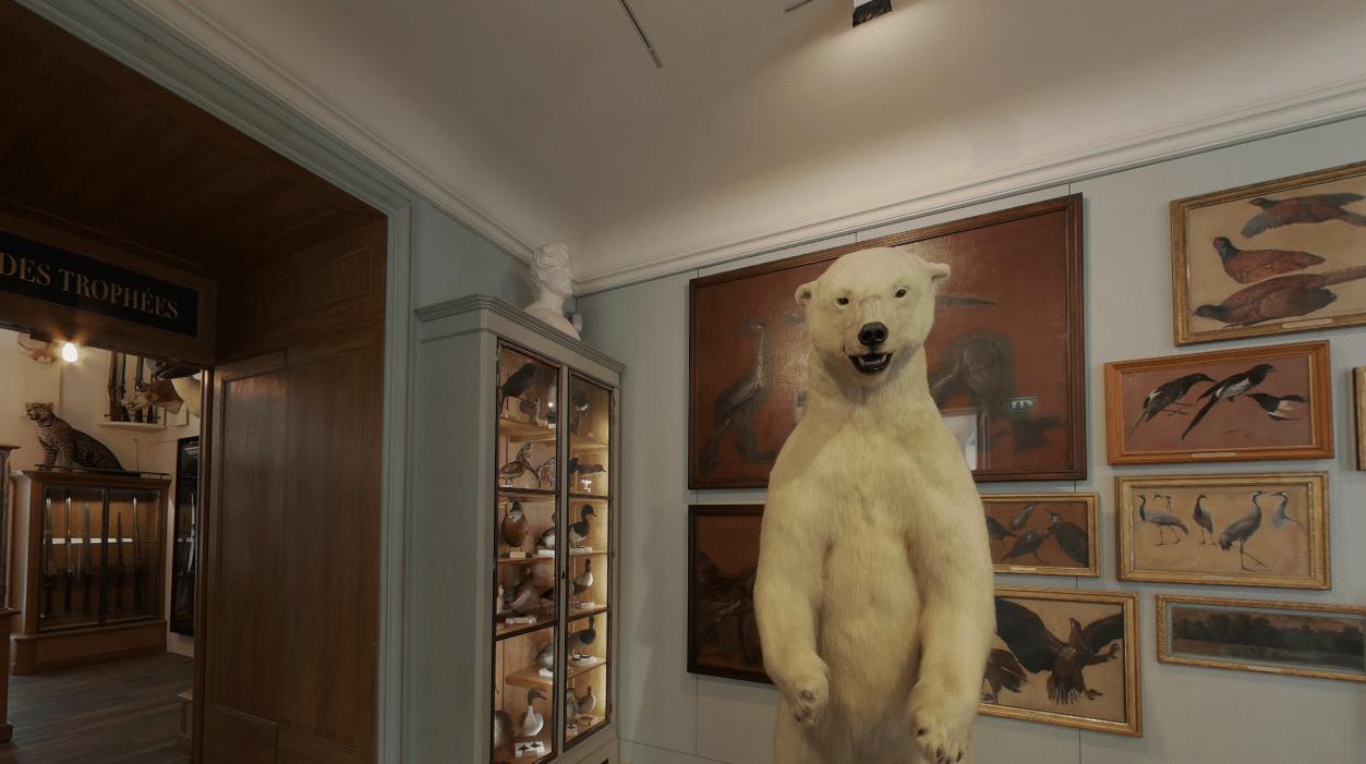musée de la chasse et de la nature ouverture 2021 paris
