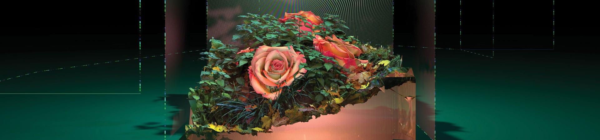 hors pistes - festival - centre pompidou - image - en ligne - conférence