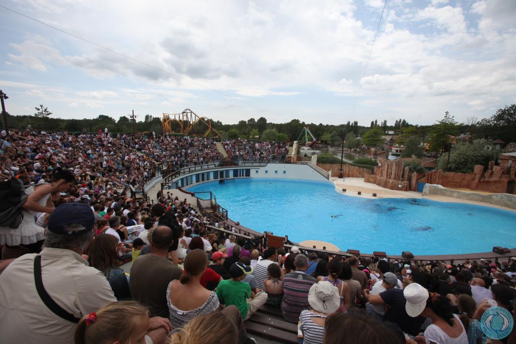 Parc Asterix ferme son delphinarium