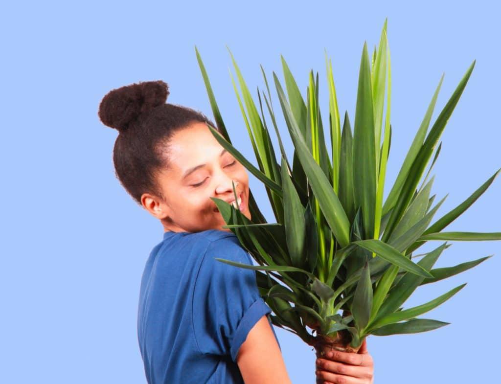 plantes pour tous - marché - saint valentin - jardin - cultiver - vert