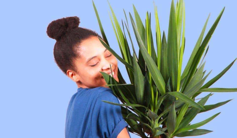Paris : 'Plantes pour tous' vous invite à une nouvelle vente éphémère ce week-end !