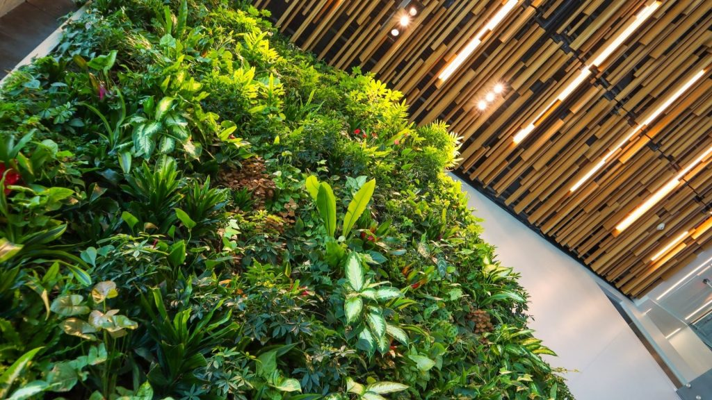mur végétal paris plus beaux culture nature vert green