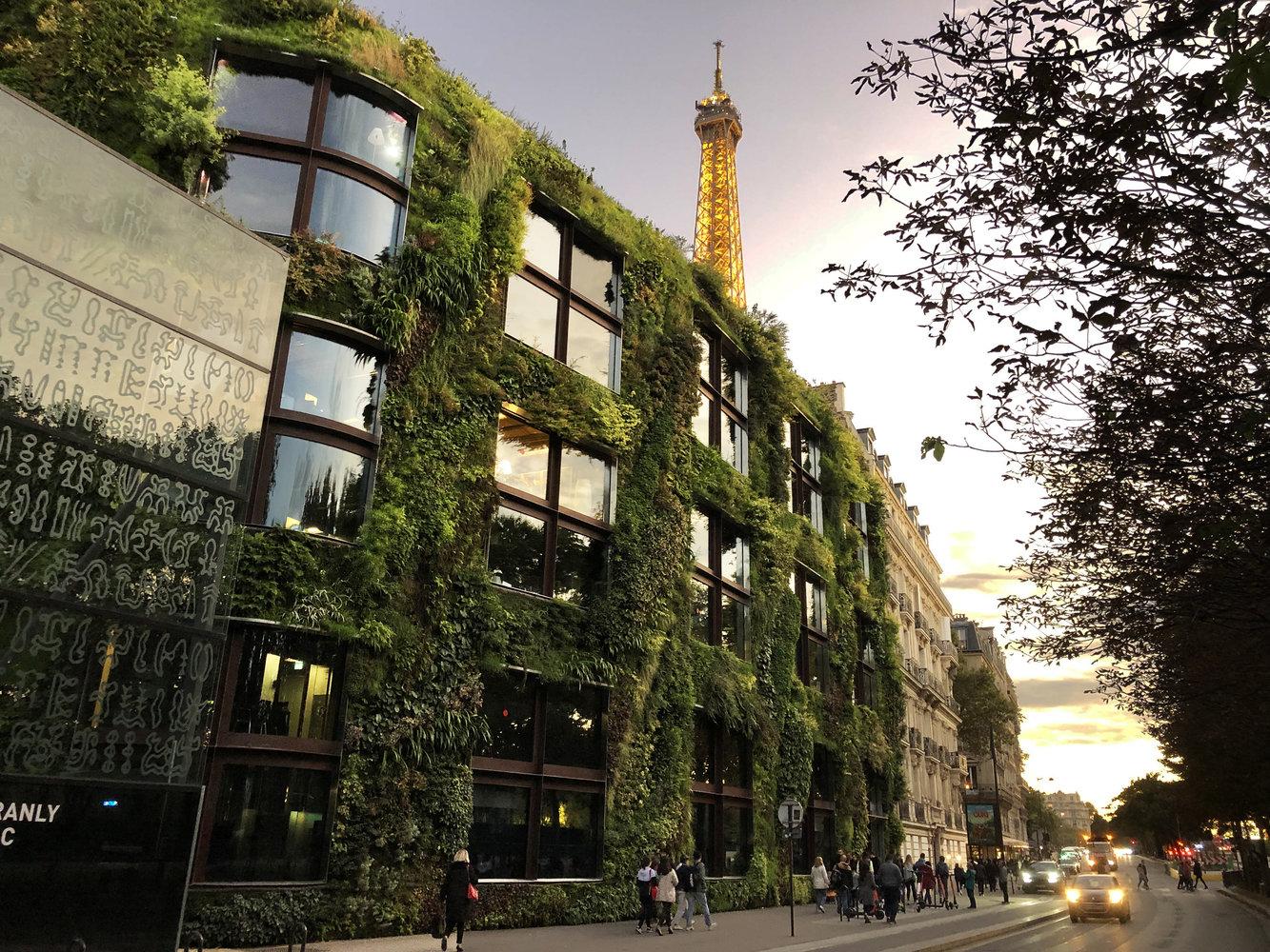 mur végétal paris quai branly jacques chirac vertical garden patrick blanc sunset
