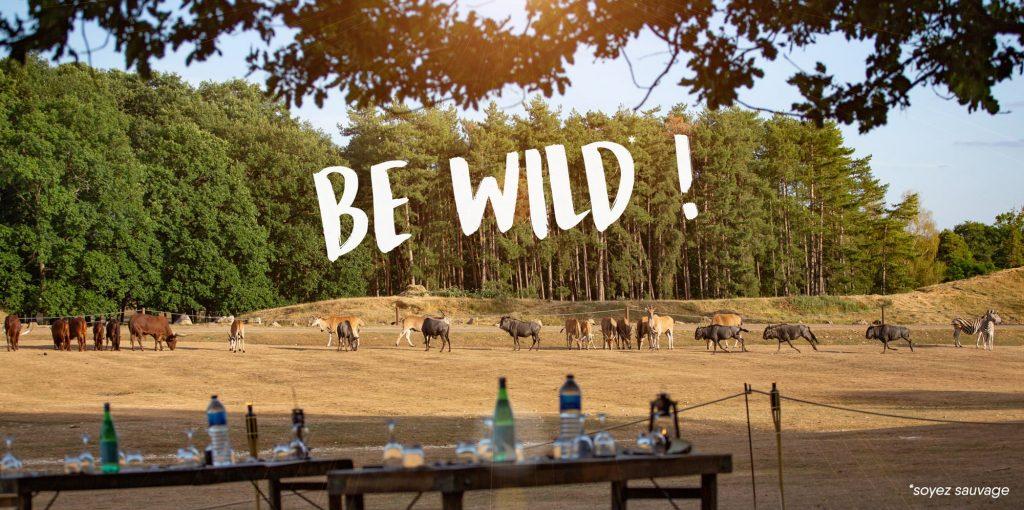 Tanières ZooSafari de Thoiry nuit insolite animaux sauvage nature juin 2021