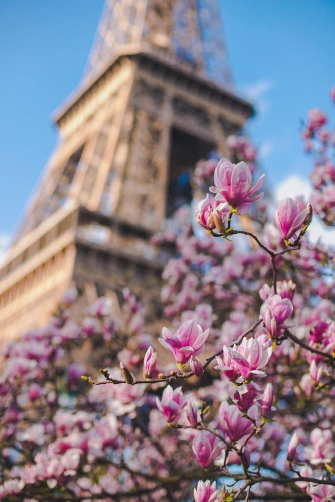 1er jour printemps 20 mars 2021 plus belles photo Paris en fleurs