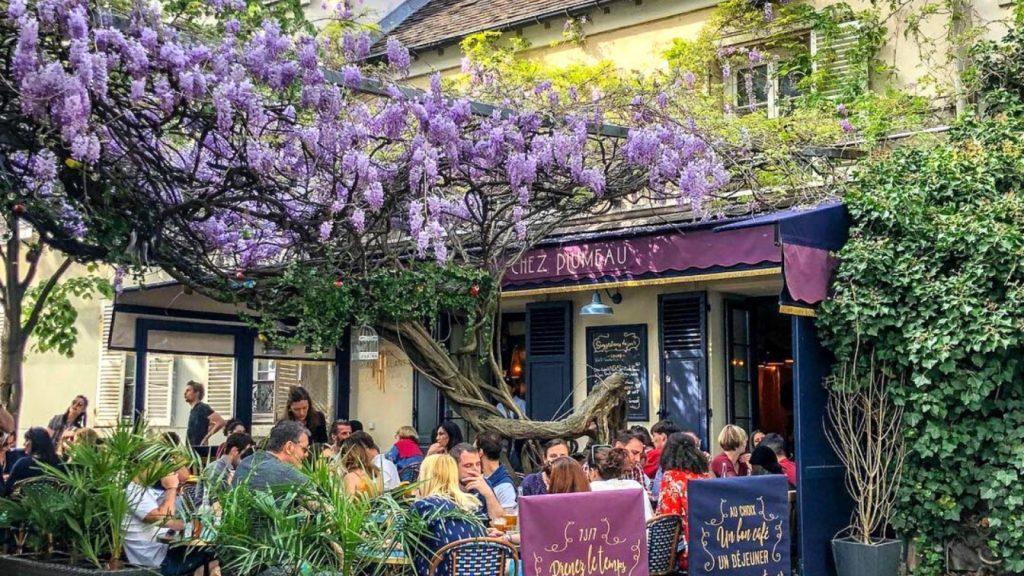 Glycine centenaire Montmartre Chez Plumeau tronçonnée rasée par la Mairie de Paris