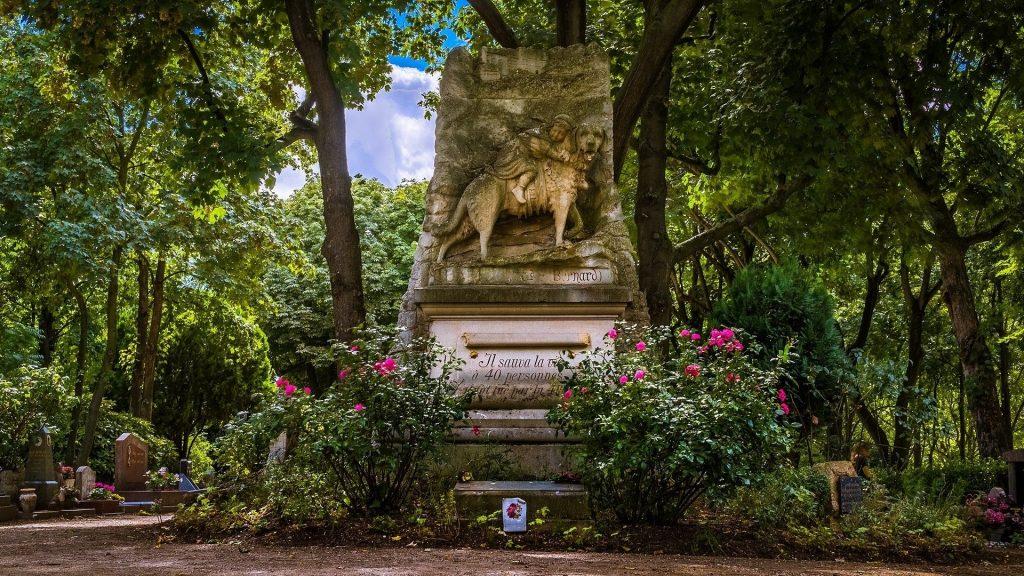 Découvrez l'histoire du Cimetière des Chiens, le premier cimetière pour animaux au monde !
