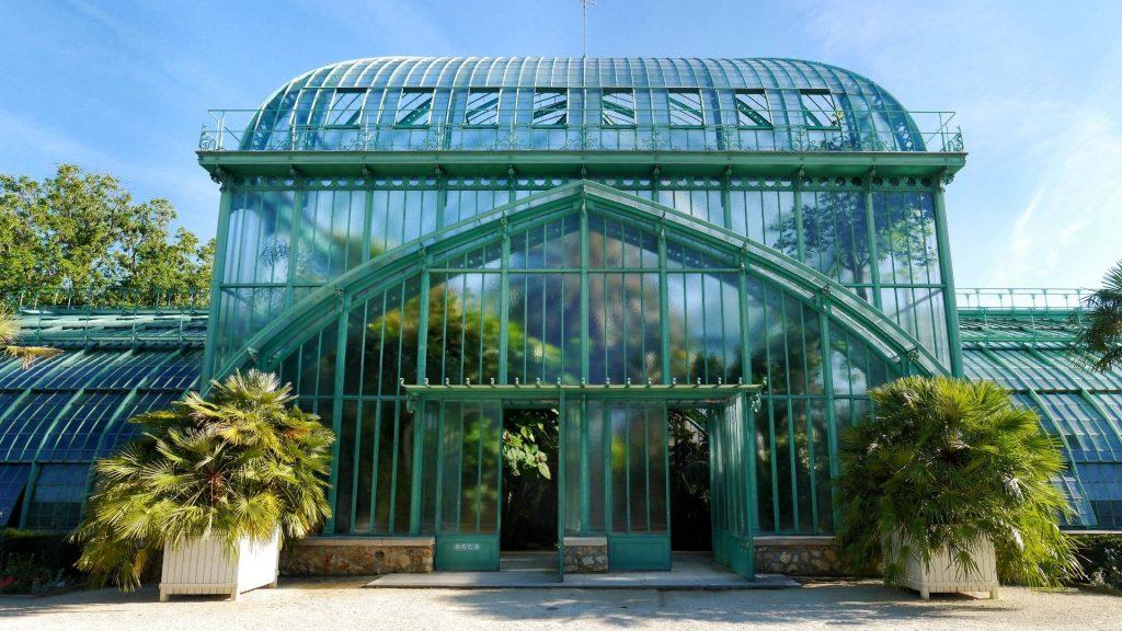 serres d'auteuil paris 16ème arrondissement palmier 15 mètres de haut palmeraie palmarium arbre nature