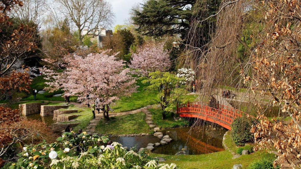 Nature : Découvrez le magnifique jardin japonais du Musée Albert Kahn à Boulogne !