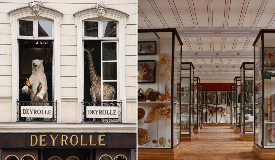 Les lieux culturels les plus insolites à voir à Paris !
