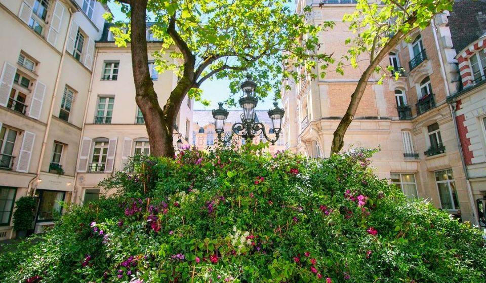 Street art : la place Furstenberg se pare d'une installation florale monumentale de plus de 2m de haut !