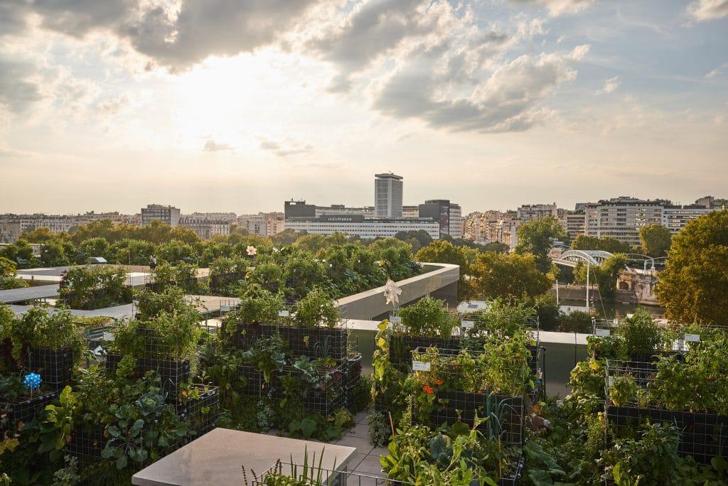 Peas&Love fermes urbaines potagers Paris
